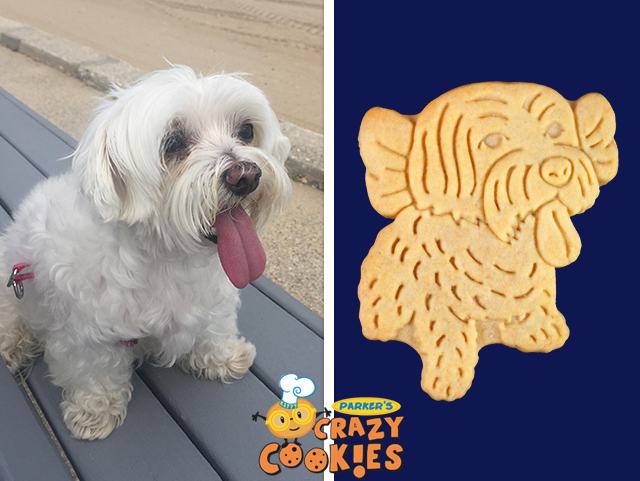 Pet Owner Gift Ideas Archives Parkers Crazy Cookies Llc